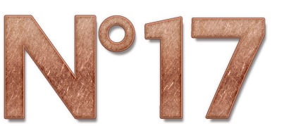 no-17-isolated-logo-copper-effect